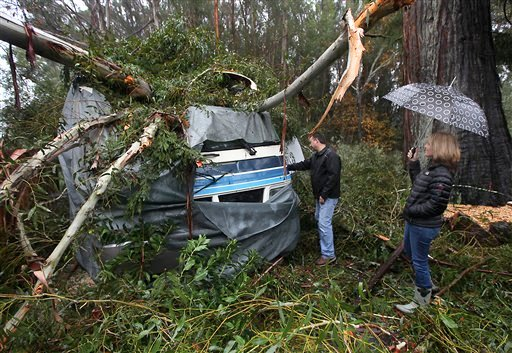 © A large eucalyptus tree crushed the 1994 Southwind motor home of Scott and Jennifer Miller on Lynch Road, Friday, Nov. 30, 2012 in Sebastopol, Calif.