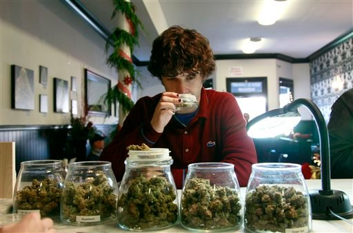 File - In this Dec. 15, 2011 file photo, medical marijuana patient Kevin Brown smells marijuana available at The Apothecarium Medical Cannabis Dispensary in San Francisco. (AP)