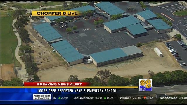 This is an aerial shot from Chopper 8 of Innovations Academy in Scripps Ranch.