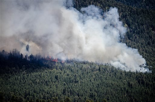 The Thompson Ridge fire burns in an area just north of the town of Jemez Springs, New Mexico, Saturday, June 1, 2013.
