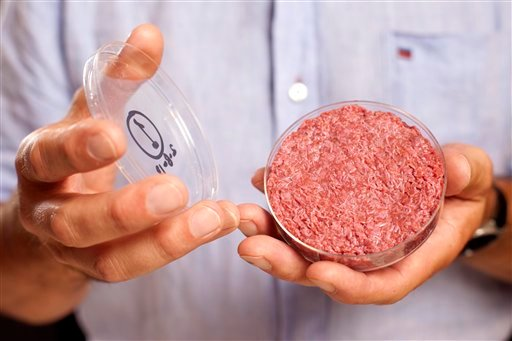 A new Cultured Beef Burger made from cultured beef grown in a laboratory from stem cells of cattle, is held by the man who developed the burger, Professor Mark Post of Netherland's Maastricht University, during a the world's first public tasting event.