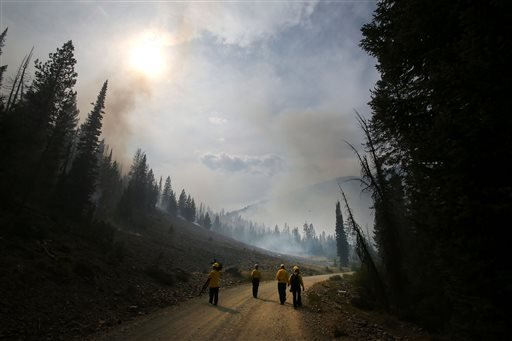 In this Aug. 19, 2013 file photo, members of the media wa;l through part of the 104,457 acres Beaver Creek Fire in the Baker Creek area north of Ketchum, Idaho.