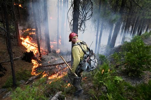 Firefighter Russell Mitchell monitors a back burn during the Rim Fire near Yosemite National Park, Calif., on Tuesday, Aug. 27, 2013.