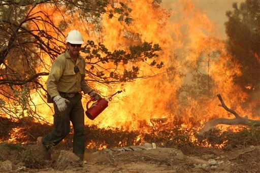 In this photo provided by the U.S. Forest Service, a member of the BLM Silver State Hotshot crew using a drip torch to set back fires on the southern flank of the Rim Fire on Pilot Peak, Calif., Friday, Aug. 30, 2013.