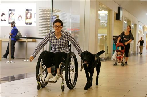In this photo taken Tuesday, Oct. 8, 2013, Wallis Brozman is aided by her service dog Caspin while going through a shopping mall in Santa Rosa, Calif. (AP Photo/Eric Risberg)