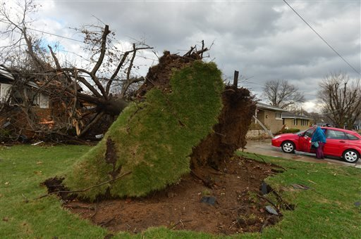 A tree was pulled out of the ground by the roots, collapsing onto a house after a tornado left a path of devastation through the north end of Pekin, Il.,Sunday, Nov. 17, 2013.