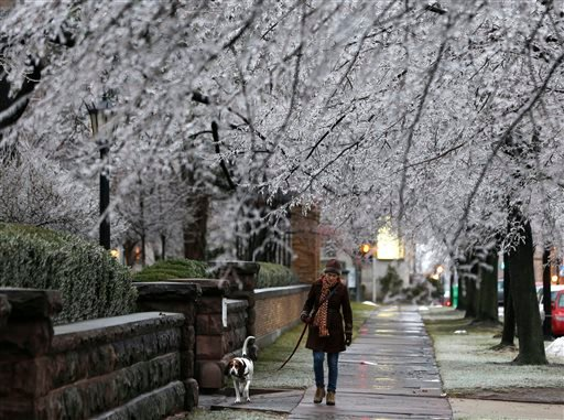 Heather Griffin, of Buffalo, N.Y., and her dog Sal walk beneath ice-covered trees on Sunday, Dec. 22, 2013, in Buffalo.