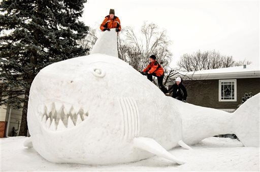 Three brothers, from left, Trevor, Connor, and Austin Bartz built this 16 foot high snow shark in the front yard of their New Brighton, Minn. home, Wednesday, Jan. 1, 2014.