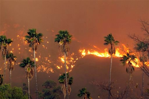 A wildfire burns in the hills just north of the San Gabriel Valley community of Glendora, Calif. on Thursday, Jan 16, 2014.