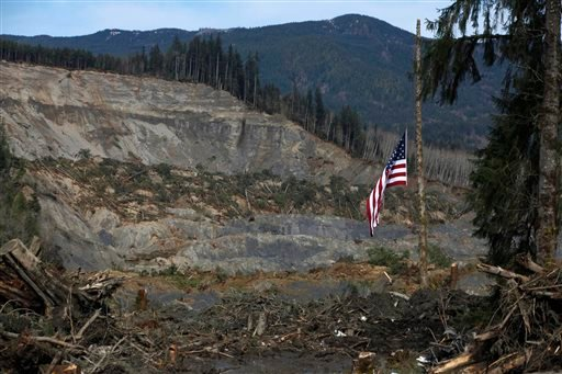 An American flag hangs from the only cedar post left standing at the scene of a deadly mudslide, Monday, March 31, 2014, in Oso, Wash. (AP Photo/The Herald, Sofia Jaramillo, Pool)