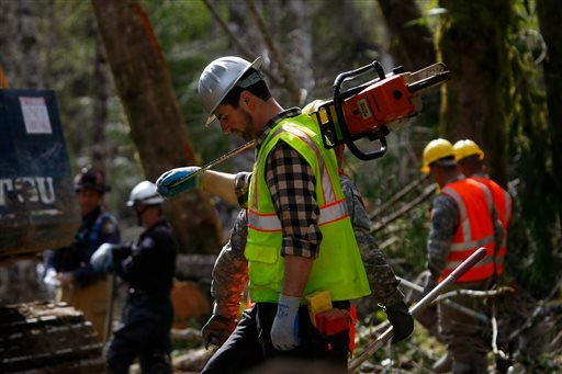 A volunteer, carrying a chainsaw, walks into the debris field, Wednesday, April 2, 2014, where workers continued to search through the mudslide area in Oso, Wash. (AP Photo/The Herald, Genna Martin)