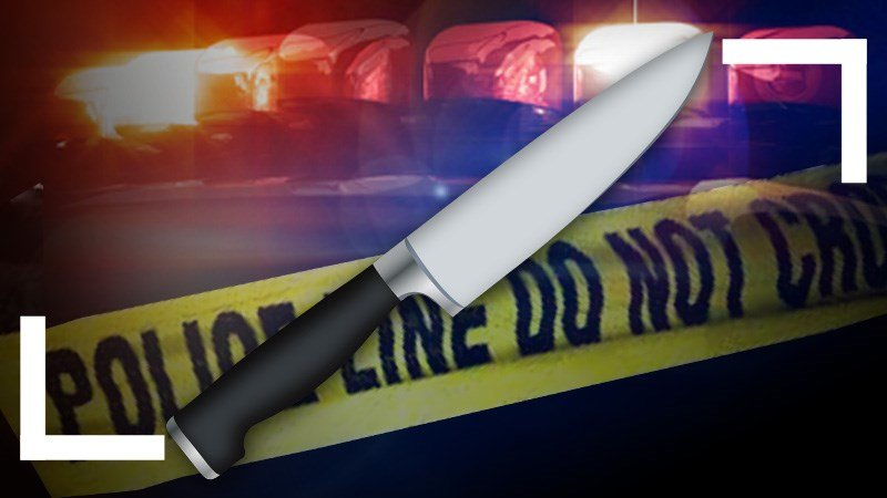 Woman arrested on suspicion of stabbing adult son