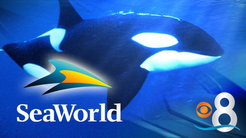 GENERIC - SeaWorld