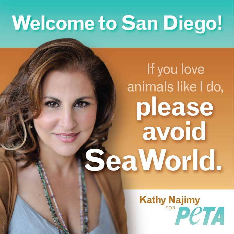 Image from PETA