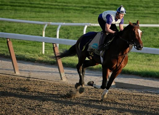 Tonalist gallops around the track during a workout at Belmont Park, Friday, June 6, 2014, in Elmont, N.Y. (AP)