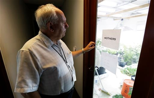In this June 25, 2014 photo, Bob Leeds, who retired from banking and social-services work to become a partner at Sea of Green Farms, a licensed pot-grower in Seattle, stands outside the room where plants used to clone smaller plants are kept.
