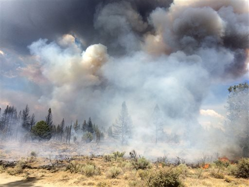 In this Sunday July 13, 2014, photo released by the Oregon Dept. of Forestry, the Moccasin Hill fire burns north of Sprague River and northeast of Klamath Falls, Ore.