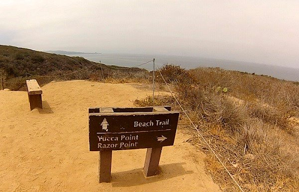 Following this Beach Trail sign took me straight to the water.