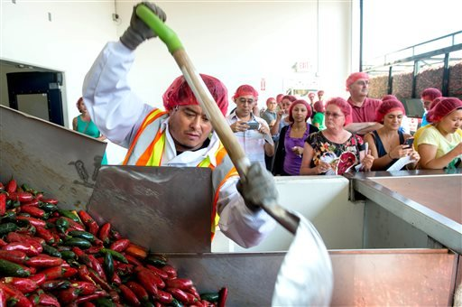 Employee Victor Avila pushes the chili down the hopper machine during chili grinding process at Huy Fong Foods in Irwindale, Calif., on Friday, Aug. 22, 2014. (AP Photo/San Gabriel Valley Tribune, Watchara Phomicinda)
