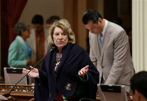 State Sen. Jean Fuller, R-Bakersfield, urged lawmakers to reject legislation that would make California the first state to ban single-use plastic bags, Friday, Aug. 29, 2014, at the Capitol in Sacramento, Calif.
