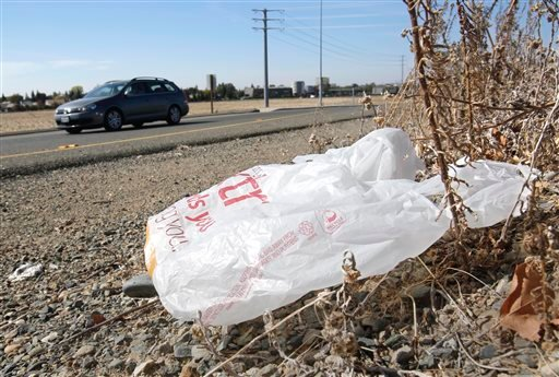 In this file photo taken Friday, Oct. 25, 2013, a plastic shopping bag liters the roadside in Sacramento, Calif. Gov. Jerry Brown has signed legislation on Tuesday, Sept. 30, 2014 imposing the nation's first statewide ban on single-use plastic bags.