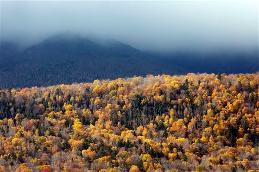 In this Monday, Oct. 13, 2014 photo, a tourist photographs Crawford Notch in Carroll, N.H., as foliage reaches peak in New Hampshire's White Mountains.