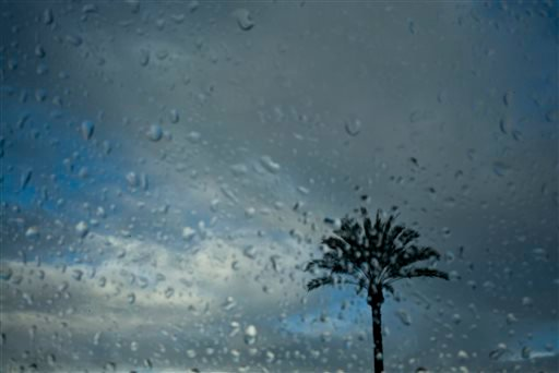A palm tree is shown though rain drops on a car window Saturday, Nov. 1, 2014, in Arcadia, Calif. Showers and thunderstorms soaked Southern California overnight. (AP Photo/Jae C. Hong)