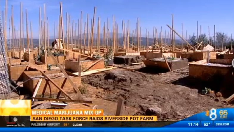 San Diego NTF raided this medical marijuana farm in De Luz on Sept. 24