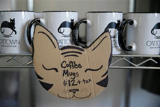 In this photo taken Thursday, Nov. 6, 2014, coffee mugs are shown for sale at the Cat Town Cafe in Oakland, Calif.