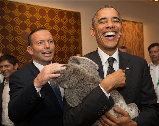 In this photo released by G20 Australia and taken on Nov 15, 2014, President Barack Obama laughs as holds a koala while Prime Minister of Australia Tony Abbott looks on. (AP Photo/G20 Australia,Andrew Taylor )