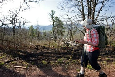 May 10, 2013 file photo: Lynn Cameron of Mount Crawford, Va., looks out at the view while hiking the Mines Run Trail, on Shenandoah Mountain, Va., which is in the George Washington National Forest in Va. (AP Photo/Daily News-Record, Nikki Fox, File)