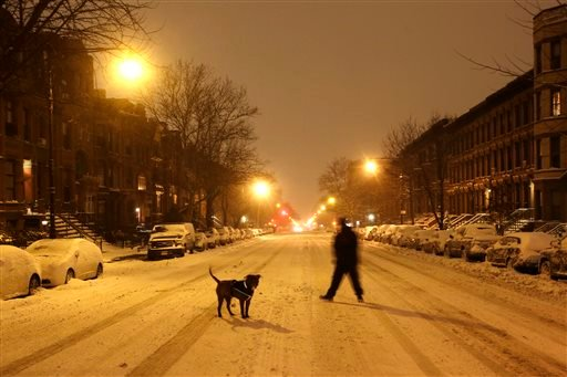 A man takes his dog for an early morning walk in the middle of an empty street in the Park Slope neighborhood in the Brooklyn borough of New York, Tuesday, Jan. 27, 2015. Tens of millions of people along the East Coast hunkered down for a storm that for m