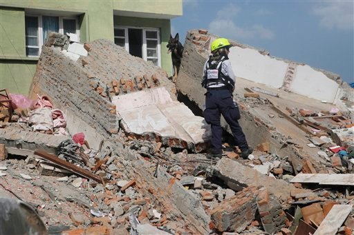 A rescue worker from USAID along with a sniffer dog looks for survivors at the site of a building that collapsed in an earthquake in Kathmandu, Nepal, Tuesday, May 12, 2015. A major earthquake has hit Nepal near the Chinese border between the capital of K
