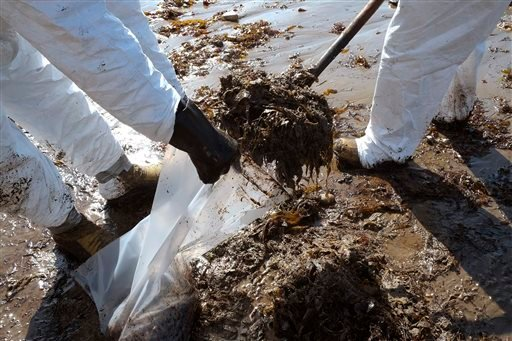 Crews from Patriot Environmental Services collect oil-covered seaweed and sand from the shoreline at Refugio State Beach, north of Goleta, Calif. May 20, 2015. (AP Photo/Michael A. Mariant)
