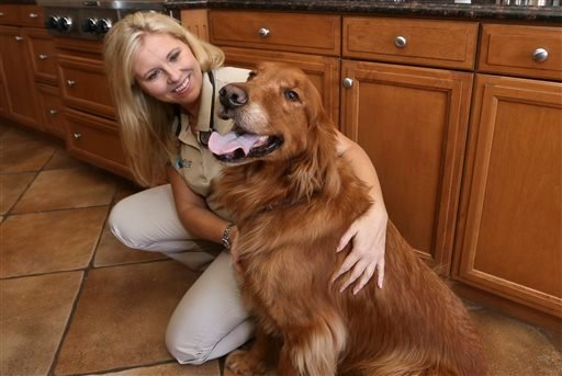 Dr. Jessica Vogelsang, a hospice veterinarian for Paws Into Grace and the author of All Dogs Go To Kevin: Everything Three Dogs Taught Me, poses for a photo with Brody, her golden retriever.