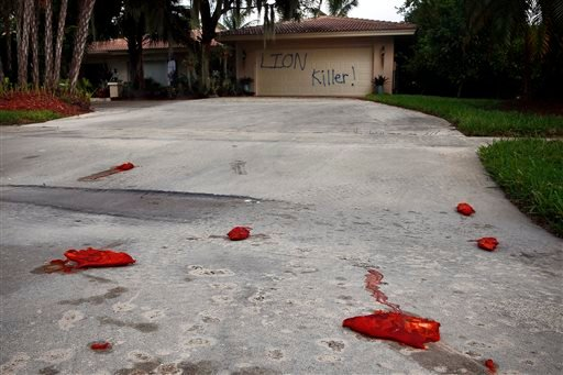 """Driveway shown vandalized Aug. 4, 2015, at the Marco Island home of dentist Walter J. Palmer. The home was discovered defaced with the worlds """"LION Killer!"""" and littered with pigs feet drenched in hot sauce. (Corey Perrine/Naples Daily News via AP)"""