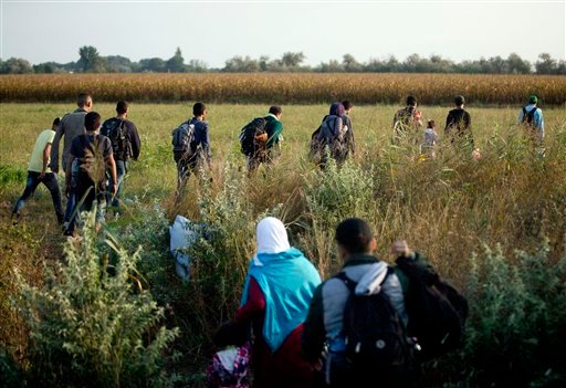 In this Thursday, Aug. 27, 2015 photo, refugees run into a corn field after crossing from Serbia through the barbed wire fence, near Roszke, southern Hungary. Round the clock, thousands of refugees cross daily along the approximately 110-mile (175-kilomet