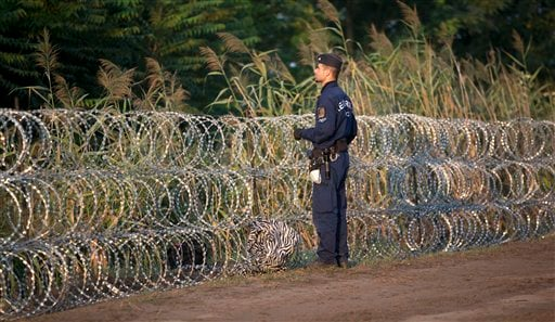 In this Thursday, Aug. 27, 2015 photo, a Hungarian police officer inspects the barbed wire fence near Roszke, southern Hungary. Round the clock, thousands of refugees cross daily along the approximately 110-mile (175-kilometer) border with non-EU member S