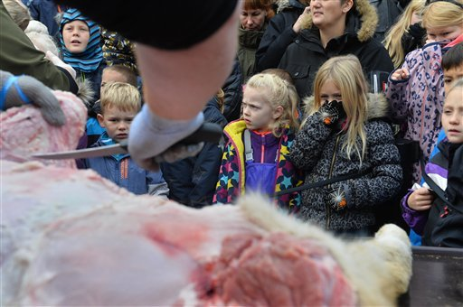 Children reacts to the dissection of a dead male lion in Odense Zoo, Denmark, Thursday, Oct 15, 2015. This year the zoo has killed three of its lions, saying they had failed to find new homes for them despite numerous attempts. (Ole Frederiksen/Polfoto vi