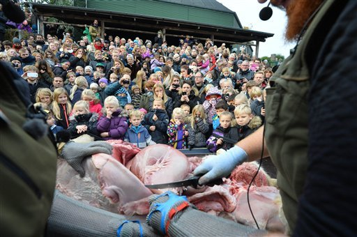 EDS NOTE GRAPHIC CONTENT Children reacts to the dissection of a dead male lion in the zoo, in Odense Denmark, Thursday, Oct 15, 2015. This year the zoo has killed three of its lions, saying they had failed to find new homes for them despite numerous attem