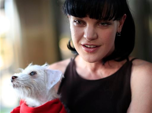 This July 15, 2010 file photo shows actress Pauley Perrette from the television show NCIS arrives at the Pacific Design Center prior to taking part in a charity dog event benefiting in West Hollywood, Calif.