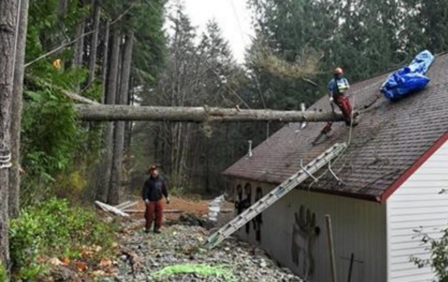 Cleanup began Wednesday in Washington state after a powerful storm killed three people, cut power to more than 350,000 residents and flooded rivers. (Steve Bloom/The Olympian via AP)