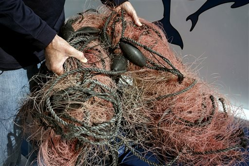 In this Monday, Nov. 30, 2015 photo, Capt. David Anderson of Captain Dave's Dolphin and Whale Watching Safari in Dana Point, Calif., shows a net a whale was found entangled in.