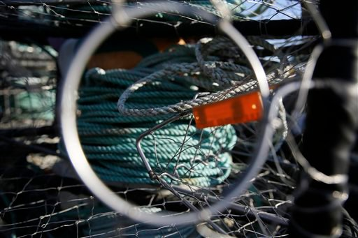 In this photo taken Thursday, Nov. 12, 2015, lines are seen inside one of crab fisherman Jim Anderson's crab pots in Half Moon Bay, Calif.