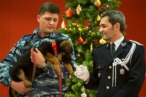 A Russian police officer holds a puppy, named Dobrynya, as a French police officer smiles before presenting the puppy to French police in the French Embassy in Moscow, Russia, Dec. 7, 2015. (AP Photo/Pavel Golovkin)