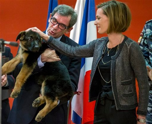 French Ambassador to Russia, Jean Maurice Ripert, holds a puppy, named Dobrynya, as his wife Yael pets the puppy during a ceremony presenting the puppy to French police in the French Embassy in Moscow Dec. 7, 2015. (AP Photo/Pavel Golovkin)