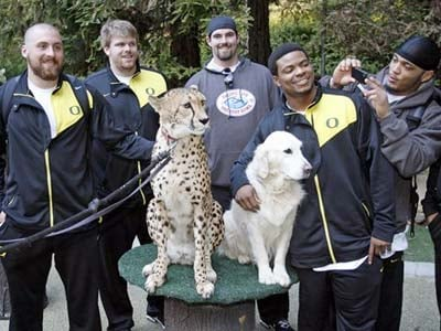 Oregon's Patrick Chung, right, photographs teammates, from left,  Nick Reed, Cole Linehan, Max Unger, and Jeremiah Johnson as they pose with Karroo, a female cheetah, and Sven Olaf, a golden retriever, during a Holiday Bowl team visit to the San Diego Zoo