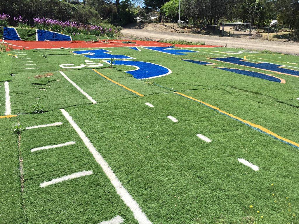 backyard football field the hippest