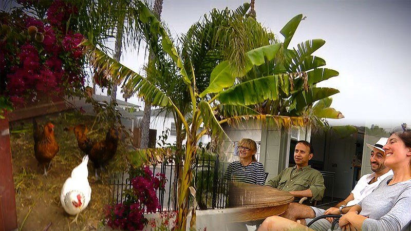 residents share ecovillage community in pacific beach. Black Bedroom Furniture Sets. Home Design Ideas