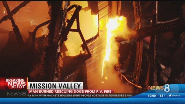 man burned rescuing dogs from r v  fire - cbs news 8 - san diego  ca news station